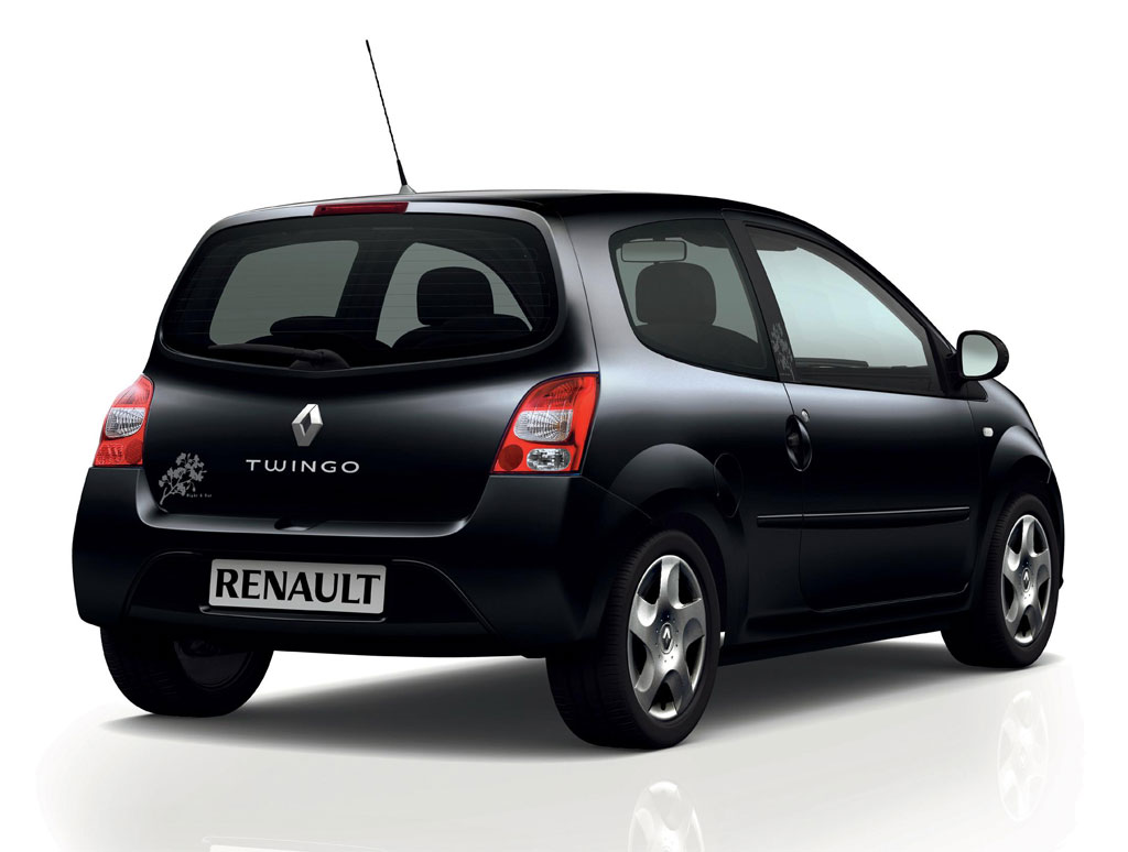 Renault Twingo Night Day 6